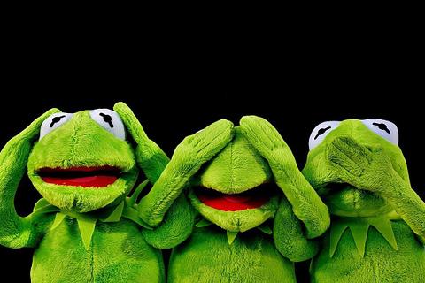 Frog Heaven